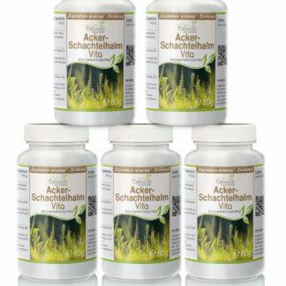 Acker-Schachtelhalm (Zinnkraut) Vita | 5 x 80g Pulver Vorsorgepaket
