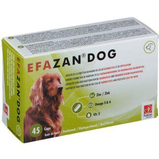 EFAZAN® DOG mit Rindgeschmack