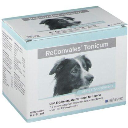 ReConvales® Tonicum für Hunde