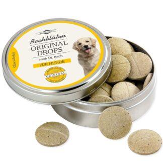 MURNAUERS Bachblüten Original Drops für Hunde
