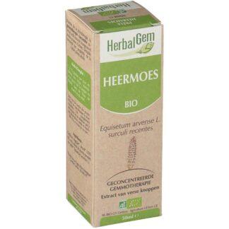 HerbalGem Acker-Schachtelhalm Bio