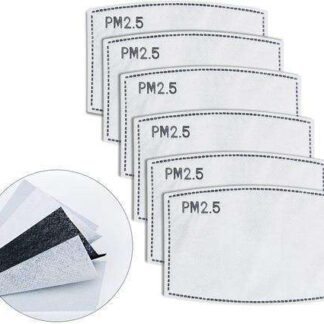Cloth Mask Filters (PM 2.5 Mask Filters) - 10 Pack